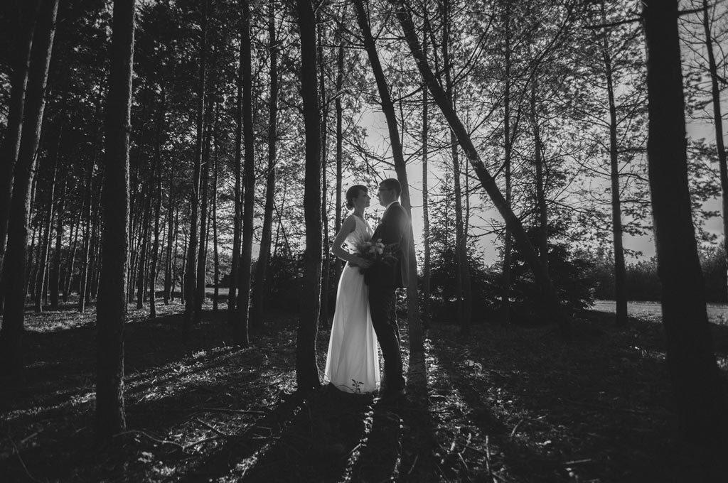 Fotografia ślubna Chojnice sesja w lesie